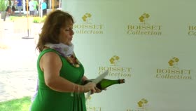 Sowal Wine and Food Festival Benefiting Chi...